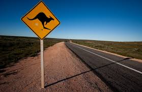 Kangaroo-crossing