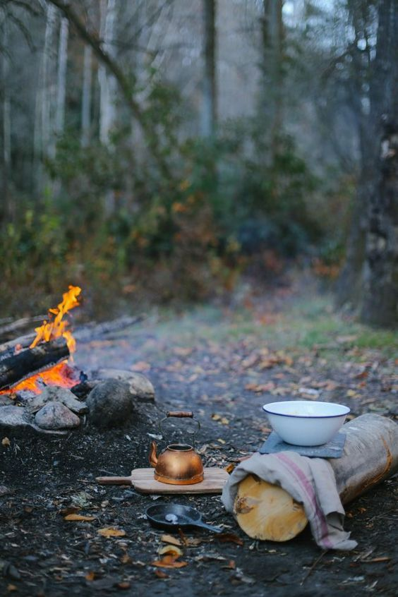 Frugal Campfire Cooking Like A Boss - Tips from the pro's