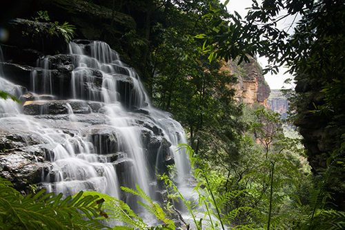 wentworth falls new south wales