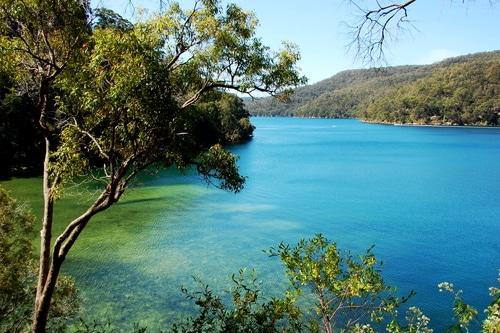 Ku-Ring-Gai Chase National Park NSW